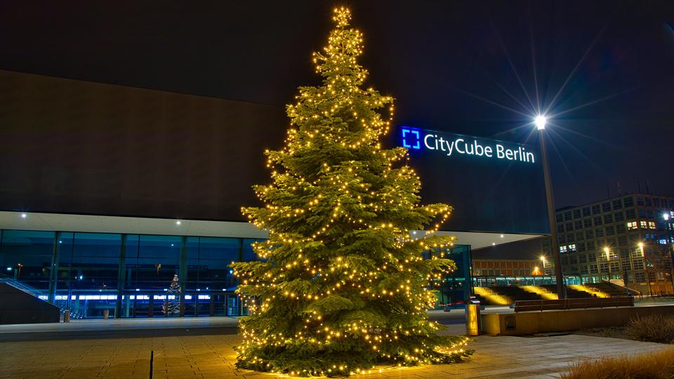 Ihr Baum als Hingucker zur Weihnachtszeit